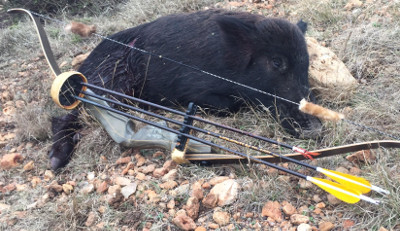 Traditional Outdoors Podcast – Episode #20 - Arrow Lethality with
